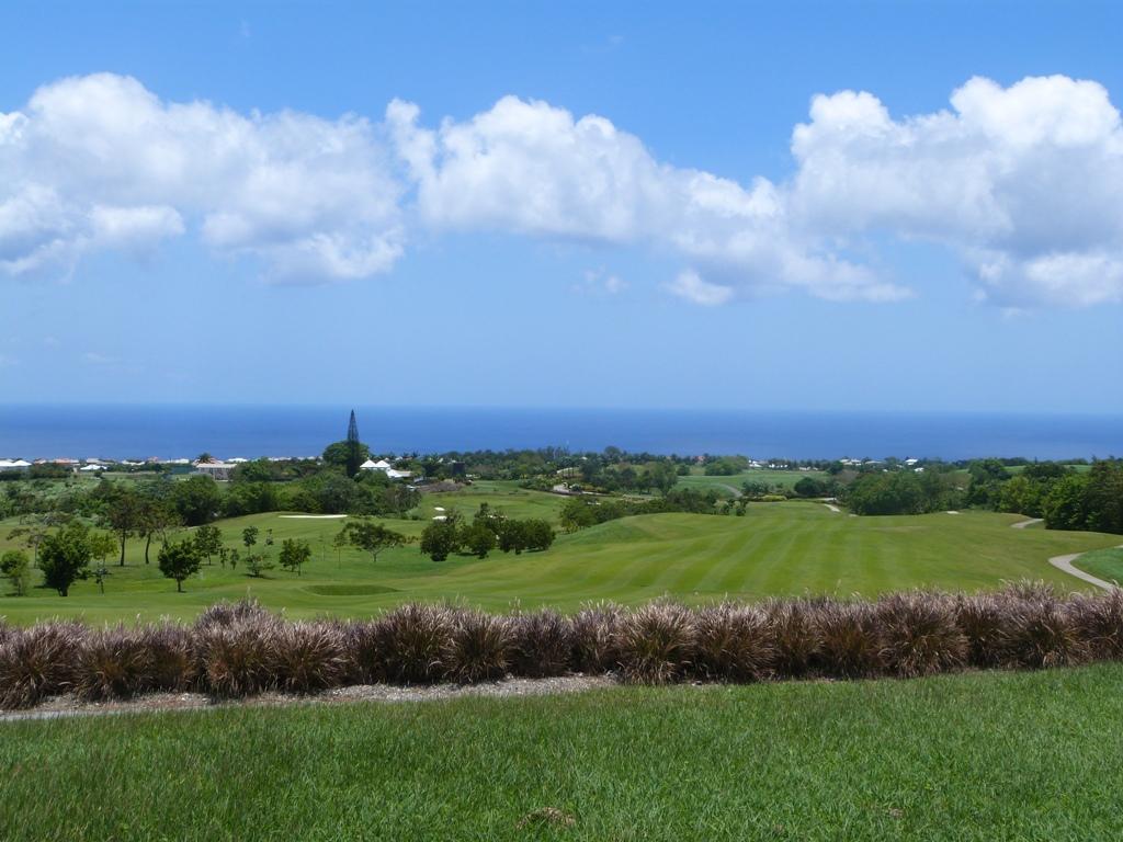 Top Car Rentals Barbados Reviews